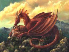 Drachen (14)