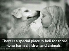 """There is an even more special place in Hell for those adults who USE animals to harm or kill children.   Like the dog owners who are proud when their dog is aggressive and then make excuses for their dogs behavior. """"I didn't think Spot would ever hurt anyone. He never hurt ME."""""""
