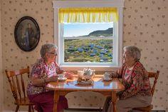 Lose Yourself in Conversation.  -  Newfoundland & Labrador