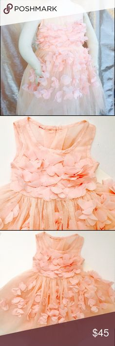 Toddler fashion dress,girls pink dres,girls dress Beautiful blush pink dress perfect for a princess, birthday party, gift, photo shoot. Is made of tulle and fabric petals very delicate elegant gown✨firm price✨ Dresses Formal