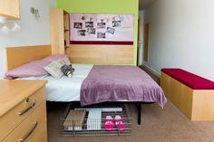 Mountain Halls Premium: Under bed storage is provided. Under Bed Storage, Mountain, Student, Furniture, Home Decor, Decoration Home, Room Decor, Home Furnishings, Home Interior Design