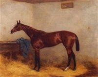 Chopette a bay racehorse in a stable by Harry Hall