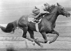 5th Triple Crown Winner: Whirlaway in 1941