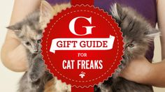 Gift Guide for People Who Instagram Their Cats