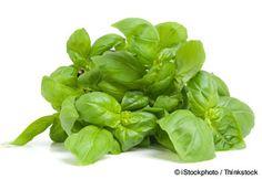 Albahaca: Considerada una de las hierbas más saludables debido a su contenido de vitamina K, A y C, hierro, calcio, manganeso, y magnesio.