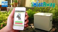 A cool upgrade would be to install an Mosquito Misting System to your backyard especially if you live in an area infested with them. This system costs between $2000 and $4000 dollars (depends on your yard size) and provides automatically mists twice a day when mosquitos are most active