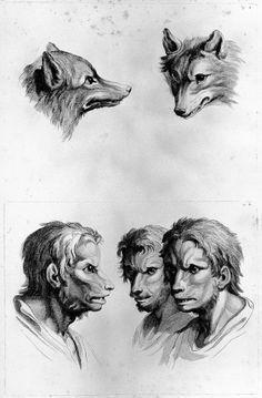 In the late 1600s, French artist Charles Le Brun created a series of works based around what he imagined humans would look like if they had evolved from different species.