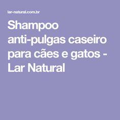 Shampoo anti-pulgas caseiro para cães e gatos - Lar Natural
