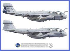 "Northrop Grumman EA-6B Prowler VAQ-137 ""Rooks"""