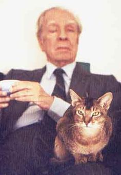 Borges and his all-seeing cat