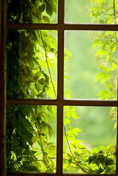 Windows│Ventanas - #Windows