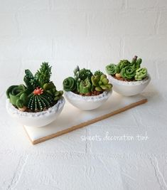 Succulents in pots, 3D cookies by Sweet Decoration Tink