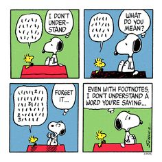 Snoopy and Woodstock. Snoopy doesn't understand a word Woodstock is saying. Peanuts Cartoon, Peanuts Snoopy, Peanuts Comics, Snoopy Cartoon, Cartoon Fun, Snoopy Love, Snoopy And Woodstock, Charles Shultz, Snoopy Comics