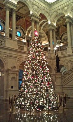 library of congress @ christmas Cool Christmas Trees, All Things Christmas, Christmas Holidays, Christmas Decorations, Holiday Decor, Primary Sources, Holiday Mood, Library Of Congress, Travel List
