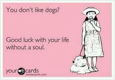 This is truly my first thought when I meet someone who doens't like dogs!