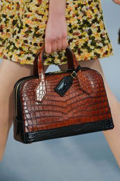 Louis Vuitton at Paris Fall 2014 (Details)