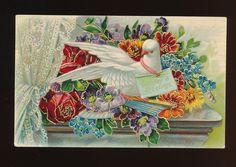 Beautiful Dove Bird Flowers Lace Curtains Emboss Postcard EEE302 | eBay