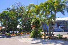 Steps to the Beach/ 1 bedroom suite - vacation rental in Sarasota, Florida. View more: #SarasotaFloridaVacationRentals