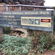 Au Sydney harbour national park gap bluff ou ce trouve l'entrée dans la baie de Sydney #australie #sydney #parc #baie #nature #océan #OcéanPacifique #pacifique