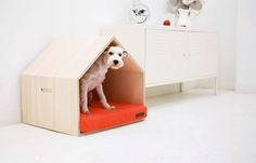 Modern Pet Products mpup