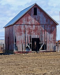 Red barn and Horse in Douglas Co KS