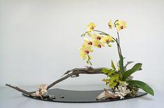 ikebana supplies