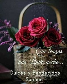 Good Night In Spanish, Good Night Flowers, Cool Pictures Of Nature, Happy Week, Good Morning Messages, Good Night Quotes, God Loves Me, Gods Love, Lily