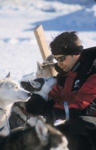Husky dog riding is popular winter activity. Ride 2, Husky Dog, Winter Activities, Popular, Dogs, Pet Dogs, Popular Pins, Doggies, Husky
