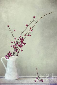 winter still life by Priska Wettstein  Simplicity.....