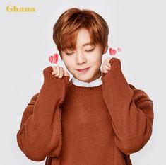Wanna-One - Park Jihoon B1a4, Jinyoung, Produce 101 Season 2, Jackson Wang, 3 In One, Nct Dream, Future Husband, Jimin, Artists