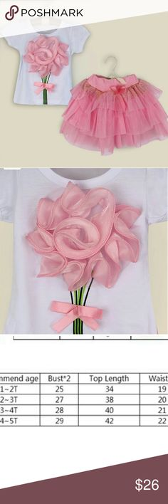 NWT Girls Tutu 3D Top 2PC Set PINK 2T 3T Adorable pink little Girls Tutu set. Please see size chart Matching Sets