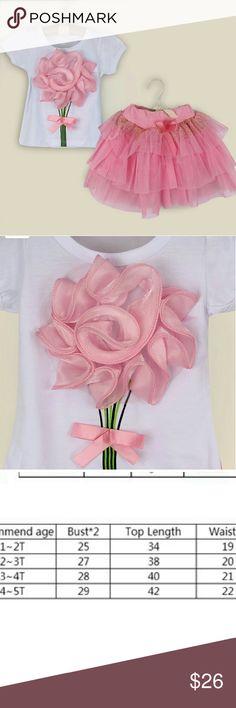 NWT Girls Tutu 3D Top 2PC Set PINK 2T 3T Adorable pink little Girls Tutu set. Please see size chart Dresses Formal