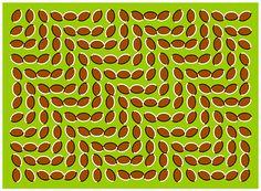 Cereales móviles. Si mueves los ojos a través de esta imagen tendrás la sensación de que los granos se mueven. No es ninguna animación sino una imagen fija. La explicación está en nuestra visión periférica, que tiende a detectar movimiento cuando se producen saltos de luminosidad en las imágenes. Además, la forma curvada y la disposición de las figuras incrementan el efecto.