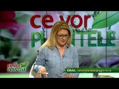 ce vor plantele cristina ghibu 2019 08 07 partea2 0341 - YouTube Science And Technology, Tv, Youtube, Tvs, Youtube Movies, Television Set