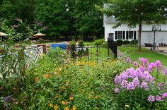 Looking a little to the left, can see pool.  Phlox, daylillies in bloom.  Late July, VA