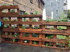 Modern Wooden Pallet Fences Pallet Planter- would love this for the bunnies in the backyard. Could put lettuce in them on the lower level!Pallet Planter- would love this for the bunnies in the backyard. Could put lettuce in them on the lower level! Vertical Pallet Garden, Wood Pallet Planters, Pallets Garden, Vertical Gardens, Wood Pallet Fence, Pallet Gardening, Fence Stain, Garden Ideas With Pallets, Pallet Ideas For Outside