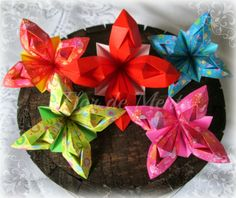 Origami Maniacs: Origami Coletto's Flower by Riccardo Coletto