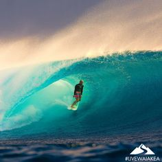 Mahalo Monday everyone! Today we're grateful for #adventure. In essence, adventure is the pursuit of life - don't avoid it, go after it!  #fearless #mindsurfmonday #waveoftheday #MahaloMonday #pipeline