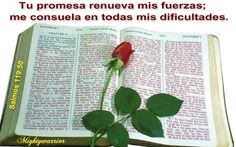 JESUS PODEROSO GUERRERO: Tus promesas me dan Vida..
