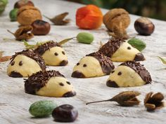 Igel-Kekse selber machen - so geht's Homemade Baby Snacks, Baby Food Recipes, Snack Recipes, Homemade Frappuccino, Ginger Molasses Cookies, Easy Smoothie Recipes, Pumpkin Spice Cupcakes, Food Shows, Summer Recipes