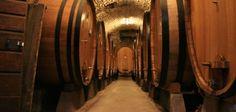 I Love Wine, il portale online che si occupa della distribuzione di vini in tutta Italia. La ns. azienda  - www.ilovewinestore.com, si rivolge a privati - operatori Ho.Re.Ca. - operatori esteri. Se siete interessati, indicateci un indirizzo di posta elettronica , così potremmo inviarVi una mail formalizzando la nostra proposta di collaborazione, oppure potreste contattarci ai recapiti in calce, al fine di fornire le informazioni necessarie. Cordiali saluti