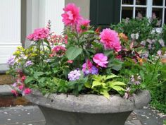 Lots of container garden ideas!