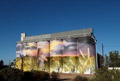 Kimba, South Australia Weird Pictures, Art Pictures, Photos, South Australia, Australia Travel, Graffiti Painting, Farm Art, Building Art, Australian Animals