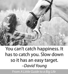 You can't catch happiness. It has to catch you. Slow down so it has an easy target. -David Young