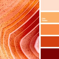 Color Palette #1696