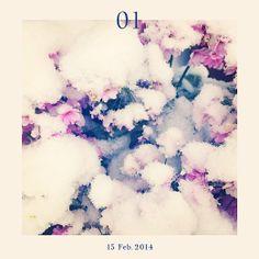 01 - 15 Feb. 2014