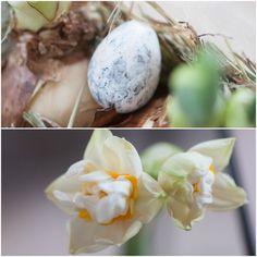 Herzenswärme Spring, Inspiration, Food, Heart, Biblical Inspiration, Essen, Meals, Yemek, Inspirational