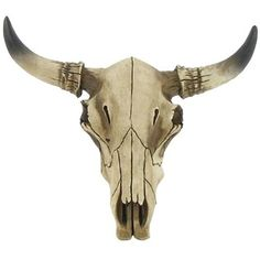 """Dramatically enliven wall decor with this Small Cow Skull. The resin skull is an artificial replica of a cow's skull head.    Dimensions:      Width: 5""""    Height: 3 1/2"""""""