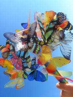 bouquet-de-borboletas-casamento