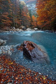 Autumn Colors and a Mountain Stream, By: Juan Pavon